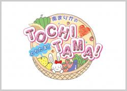 TOCHITAMA250*180.jpg